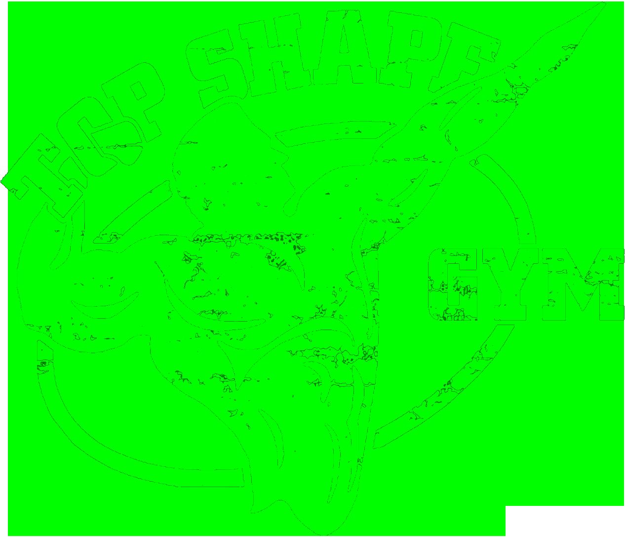 Top Shape Gym Datashare 1